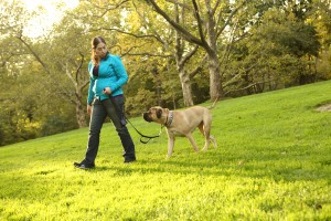 Dog trainer careers: Tamar works in a veterinary hospital outside of Philadelphia