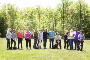 Become a dog trainer program
