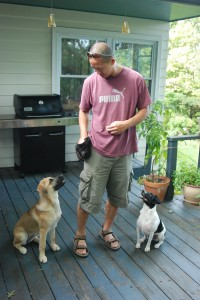 Ferdie teaching manners to Kayla the Husky-Shepherd mix and Scout the Terrier mix.