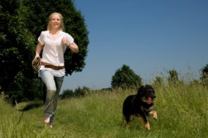 Dog Trainer School – running to the training field