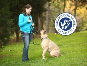 dog trainer career - CATCH Master Class