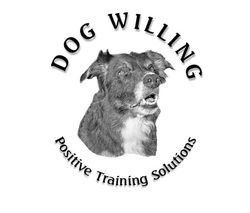 Dog Willing - Positive Training Solutions