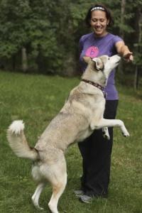 Darlene & Kota practice hand targeting.