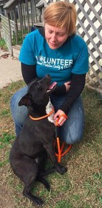 Jennifer is passionate about making a difference in the lives of shelter dogs.