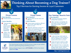 professional dog trainer infographic