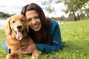 become a dog trainer in MA