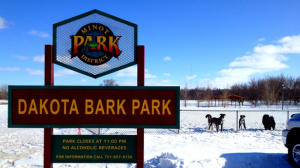 Chilling in the snow at Dakota Bark Park in Minot, ND Photo source: www.bringfido.com