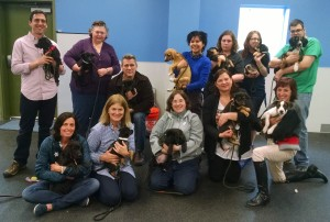 Shelter Dog Training - Puppy Training - CATCH Canine Trainers Academy