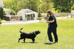 Tracie working with one of the many shelter dogs that benefited from being trained by CATCH students.